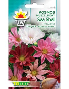 Onętek muszelkowy Sea Shell miesz. 0,5g