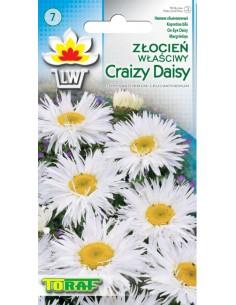 Złocień właściwy Crazy Daisy 0,2g