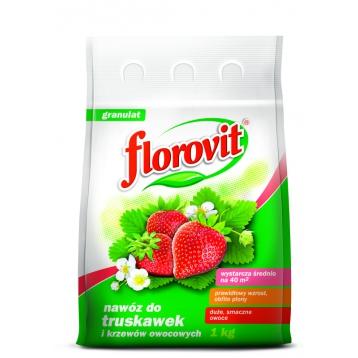 Florovit nawóz do truskawek i krzewów owocowych 1kg