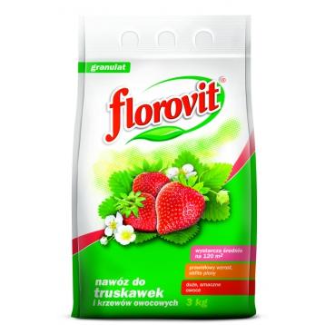 Florovit nawóz do truskawek i krzewów owocowych 3kg