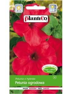 Petunia ogrodowa czerwona 0,05g