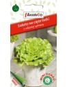 Sałata na cięte listki zielona gładka 1g