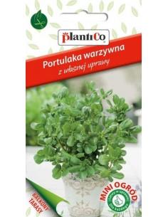 Portulaka warzywna 0,3g
