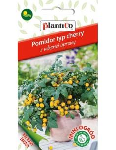 Pomidor typ cherry żółty 0,1g