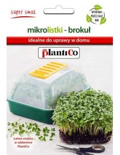 Nasiona na mikrolistki brokuł 5g