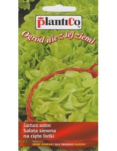 Sałata na cięte listki gładka Bionda 1g