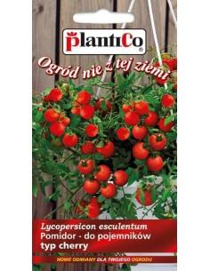 Pomidor gruntowy drobnoowocowy wiszący Bajaja 0,2g