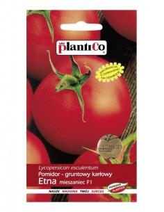 Pomidor gruntowy karłowy Etna F1 0,5g