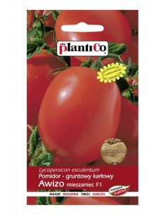 Pomidor gruntowy karłowy Awizo F1 0,5g