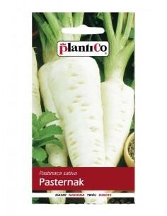 Pasternak Lech 5g