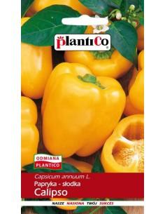 Papryka pod osłony żółta Calipso 0,5g