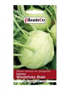 Kalarepa Wiedeńska Biała 50g