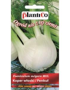 Koper włoski Fenkuł Fino 1g