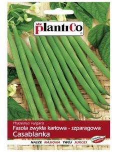 Fasola szparagowa karłowa zielona Casablanka 40g