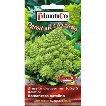 Kalafior Romanesco natalino 0,2g