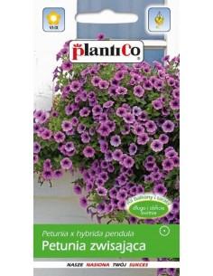 Petunia zwisająca fioletowa 0,05g