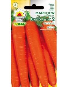 Marchew jadalna Berlikumer 2 - Perfekcja 5g