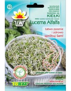 Lucerna Alfalfa na kiełki 20g