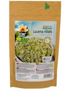 Lucerna Alfalfa na kiełki 100g