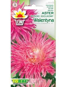 Aster ch. igieł. Walentyna różowy 1g